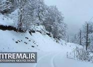 روستاهای رحیمآباد درمحاصرهی برف است؛ اما مشکل سوخت و آرد نداریم