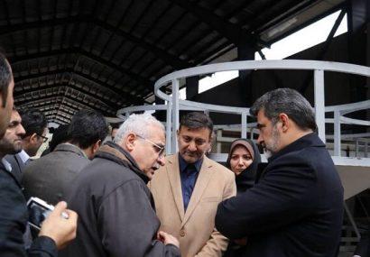 بازدید معاون وزیر از پروژهی تصفیهخانهی سراوان