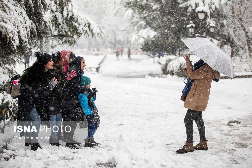 دریچهی دوربین: زمستان است