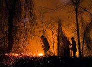 آتش سوزی ۷۲ ساعتهی جنگلهای گیلان مهار شد