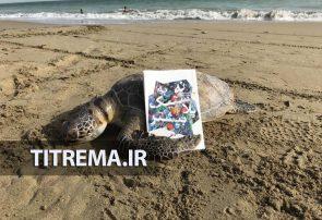 نه به پلاستیک بیشتر