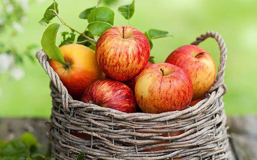 روزانه ۳۰۰۰ تن سیب از آذربایجانغربی صادر میشود