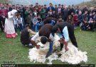 جشنوارهی کوچ پاییزه در رضوانشهر گیلان